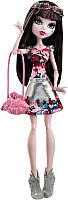 Кукла Дракулаура «Бу Йорк» Monster High CHW57/CHW55