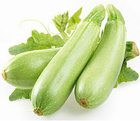 ЭЗРА F1 - семена кабачка 500 грамм, Hazera