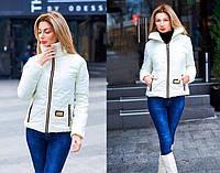 Женская куртка весна-осень на молнии в расцветках 7074