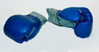 Перчатки боксерские кож. зам. 8 унций