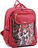 Яркий вместительный рюкзак школьный из нейлона 15 л. Bagland 58070-17