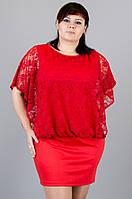 Нимфа. Платья супер батал. Красный., фото 1
