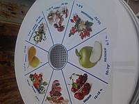 Электросушилка для фруктов Ротор (Дива)