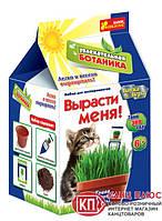 Ранок Увлекательная ботаника Трава для котов (смесь) арт.0365