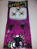 Паутина с пауками 6 шт.