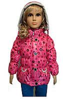 Детская Куртка демисезонная на девочку 1-3 года горох