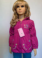 Детская Куртка на флисе на девочку 1-3 года Вышивка слива