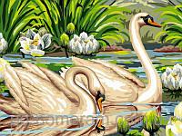 Живопись по номерам Турбо Лебеди и лотосы  30 х 40 см