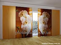 Фотоштора ПАНОРАМА 3D Уютные орхидеи, 2,7х5,0 м, арт. FRA-50000733