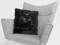 ФотоПодушка Черный кот, арт. 10 001159