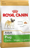 Royal Canin (Роял Канин) PUG 1,5 кг (МОПС ОТ 10МЕС)