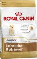 Royal Canin (Роял Канин) LABRADOR JUNIOR 12КГ (ЛАБРАДОР ДО 15МЕС.)