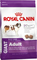 Royal Canin (Роял Канин) Giant Adult 4кг (от 18\24мес.)