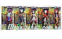 Кукла Monster High/Монстр Хай на шарнирах BooYork: 8 видов