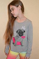 Кофточка на девочку с собачкой USA