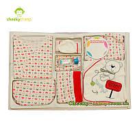 Большой подарочный набор наборы на выписку для малыша красный