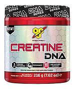 Креатин BSN Creatine DNA (216 g)