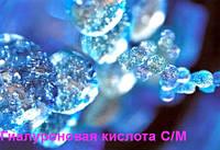 Гиалуроновая кислота (с/м)1гр