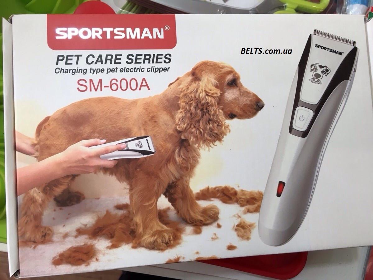 Выбираем машинку для стрижки кошек в домашних условиях 29