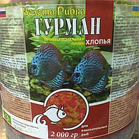 """Ведро 10л """"Гурман"""" полноценный корм для привередливых аквариумных рыб, 2кг"""