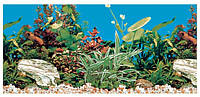 Задний фон для аквариума 60*30см
