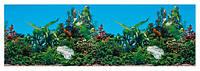 ДТ/Задний фон для аквариума 120*50