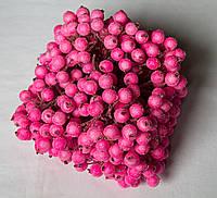 Калина в инее розовая