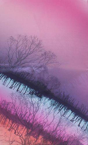 Шелковый прекрасный женский шарф 176*50 ETERNO (ЭТЕРНО) ES2711-14