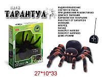 Паук тарантул на радиоуправлении 0781