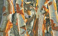 Рисунок на канве для вышивки нитками мулине 01243 Закат
