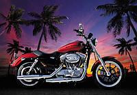 Фотообои в комнату  с мотоциклом Харлей