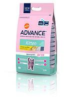 Advance Cat Kitten 15кг-корм для котят с курицей