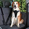 Trixie TX-12855  Dog Protect шлея транспортировочная  для собак Трикси (4 размера)