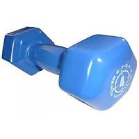 Гантели Power System Power dumbbell (2 шт. по 4 кг)