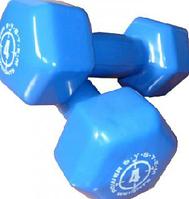 Гантель для фитнеса Power System обрезиненная 4 кг , синея