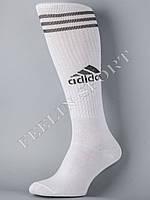 Гетры футбольные белые Адидас (Adidas)