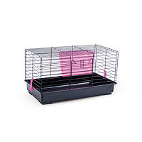 Клетка для грызунов Pet Inn Mini Benny