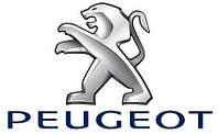 Защита двигателя Peugeot 307  (2001-2004)