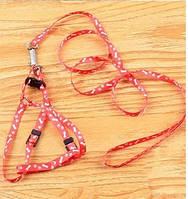 Модный нейлоновый поводок для небольшой собаки, ошейник под грудь, цвет - красный