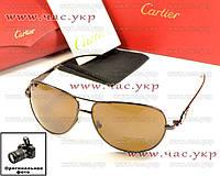 Мужские солнцезащитные очки Cartier Картье модель 2016 года стеклянянные линзы коричневые качественная копия