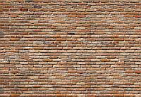 "Фотообои Komar ""Кирпичная стена"" Backstein 8-741"