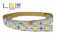Светодиодная лента LED, SMD 3528, белый холодный, 60 шт/м, не влагозащищенная IP20