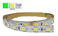 Светодиодная лента LED, SMD 3528, зеленый, 120 шт/м, не влагозащищенная IP20