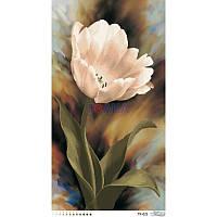 ТК-021 Тюльпан 44х82. Барвиста вишиванка. Схема на ткани для вышивания бисером