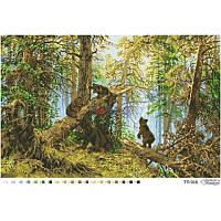 ТП-016 Утро в сосновом лесу 67х44. Барвиста вишиванка. Схема на ткани для вышивания бисером