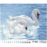 ТТ-002 Лебеди 33х26. Барвиста вишиванка. Схема на ткани для вышивания бисером