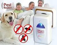 Помощник для дома – отпугиватель крыс, мышей и насекомых Pest Reject Пест Реджект