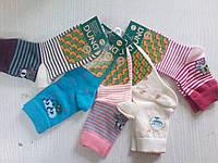 Хлопковые детские носки Дюна (арт.456)