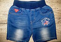 Шорты с имитацией джинсы для мальчиков S&D  1-2-3-4-5 лет
