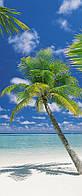 """Фотообои Komar """"Остров""""  Ari Atoll 2-1883"""